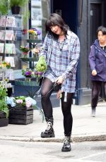 Daisy Lowe Looking very happy while out walking her dog in Primrose Hill