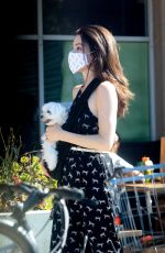Jaime Murray Carries her adorable puppy while out grocery shopping in Hollywood