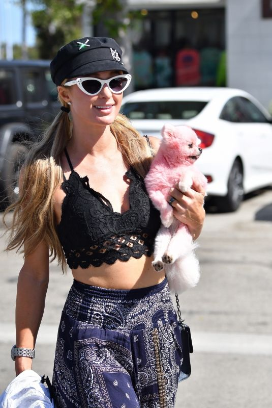 Paris Hilton Goes shopping with her pooch in Malibu