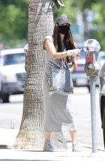 Roselyn Sanchez Pictured Stepping Out in Los Angeles