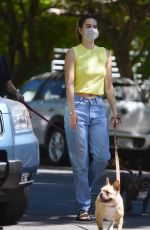 Delilah & Amelia Hamlin walk their French bulldogs in Los Angeles
