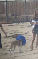 Leonardo DiCaprio and Camila Morrone take the dog to the beach with friends in Malibu