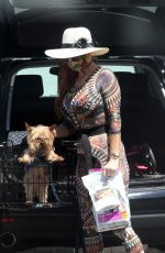 Phoebe Price Seen in an elaborate outfit as she heads to Petco for dog food in Los Angeles