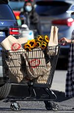 Scarlett Johansson Stocks up on groceries and sunflowers in The Hamptons