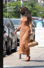 Vanessa Hudgens Picking up takeout in Los Angeles