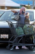 Ariel Winter Steps out to do some wine and grocery shopping in Los Angeles