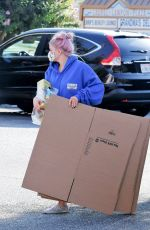 Ariel Winter Stops at UPS store in Los Angeles