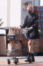 Diane Kruger Looks chic while grocery shopping in Los Angeles