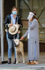 Drew Barrymore Comes to the rescue of a New Yorker whose dog was allegedly the victim of a car hit-and-run on Manhattan