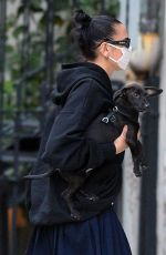 Dua Lipa Seen Getting Out of a Car with Her Dog in New York