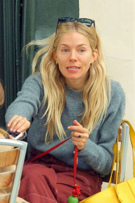 Sienna Miller Out with her pup in London