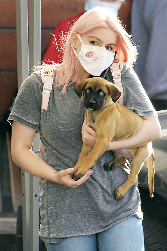 Ariel Winter Takes her new puppy to the vet for a checkup at Sherman Oaks Animal Hospital in Los Angeles