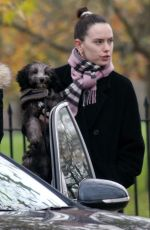 Daisy Ridley Out with her dog in Primrose Hill, London