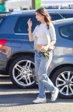 Emily Ratajkowski Spotted out shopping with a friend in Los Angeles