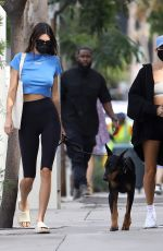 Hailey Bieber & Kendall Jenner going to lunch at Zinque Cafe in West Hollywood