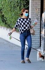 Lucy Hale Walking her dog Elvis in LA