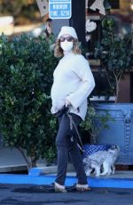 Ashley Tisdale Walking her dogs at Whizin Market Square in Agoura Hills