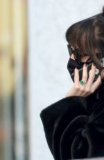 Dakota Johnson Out in West Hollywood