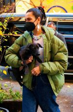 Dua Lipa Out for a walk with Dexter in NY