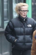 Gillian Anderson Spotted out as she visited some shops in North London