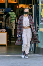 Josie Canseco Shopping on Melrose Avenue in LA