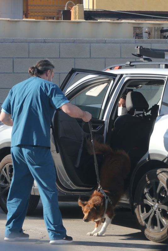Aubrey Plaza Drops her dog off at the vet in Los Angeles