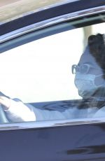 Lady Gaga Steps out for some groceries in Malibu