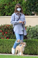 Lily Collins Walking her dog in Los Angeles