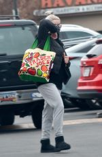 Ariel Winter Spotted going to the market in Studio City