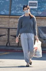 Ashley Greene Shops for groceries in Los Angeles