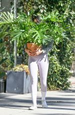 Eiza Gonzalez Pictured carrying a beautiful plant while shopping for some home decor items in Studio City
