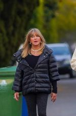 Goldie Hawn And Kurt Russell enjoy a walk in their Brentwood neighborhood with their adorable Labrador Retriever pup