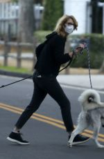 Laura Dern Seen walking her dogs in Los Angeles