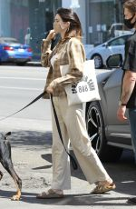 Kendall Jenner Walking her dog in West Hollywood