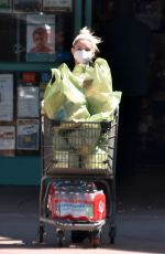 Ariel Winter Returns to her car with a shopping cart full of groceries in Studio City