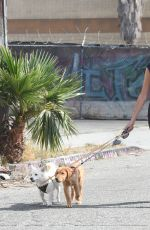 Kaia Gerber Out with her dogs in LA