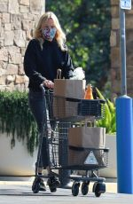 Malin Akerman Pushing a cart full of groceries and a few bottles of bubbly