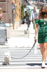 Kelly Bensimon Takes her dog for a walk while wearing a walter baker dress and holding a Hermes bag in New York
