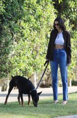 Kendall Jenner Walking her dog in Beverly Hills