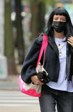 Lily Allen And David Harbour head to Brooklyn for lunch in New York