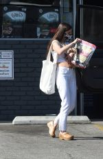 Scout Willis Treats her adorable dog to a trip to the pet store in Los Angeles
