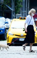 Naomi Watts And boyfriend Billy Crudup pictured during a rare outing while running errands with her pooch in the Big Apple, New York
