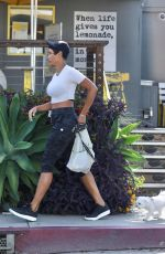 Nicole Murphy Displays her famous abs while out with her pooch for lunch