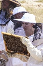 """Angelina Jolie Sponsor of the """"Women for bees"""" project during the graduation ceremony at Sainte-Baume, Mazaugues"""