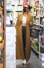 Shay Mitchell Grocery shopping in Los Angeles