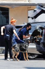 Ariel Winter Has her hands full while dropping off her dogs at the vet in Los Angeles