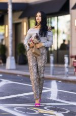 Shanina Shaik Steps out in New York City with her dog