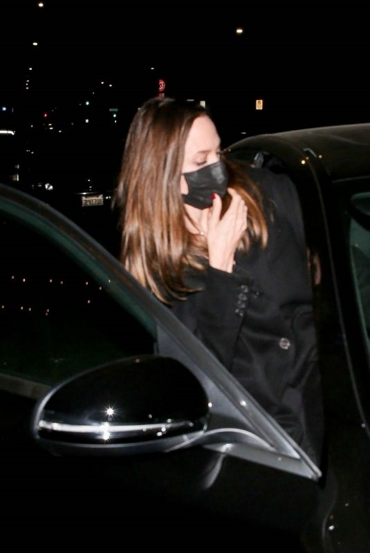 Angelina Jolie Steps out with her Ex-husband Jonny Lee Miller for a low-key dinner in Beverly Hills